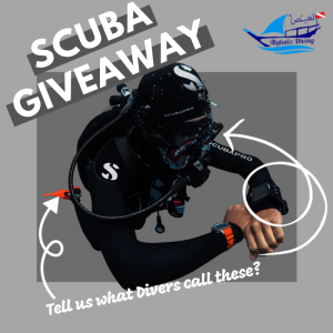 Scuba Giveaway Terms and Conditions