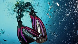5 Types of Divers You Don't Want To Be