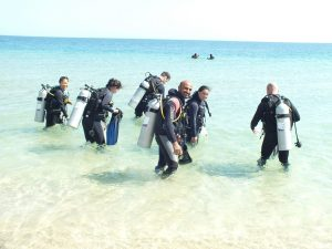 Benefits of Becoming an Alghais Diving Member